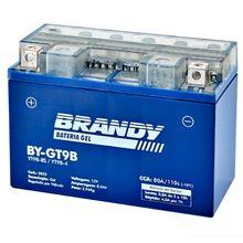 Bateria Brandy Xt660 Mt03 2008 Tenere 660 Yt9b-bs Nano Gel